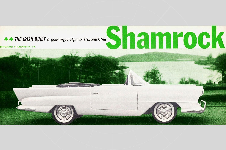 Shamrock brochure Pic: magiccarpics.co.uk | Shamrock brochure